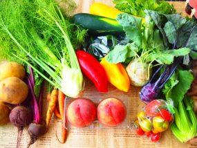 野菜洗い1